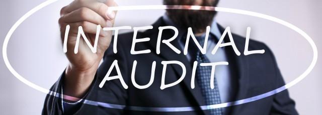 Responsibilities of auditors